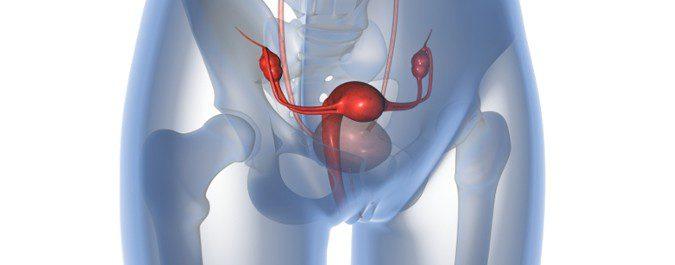 Se puede menstruar y estar embarazada al mismo tiempo