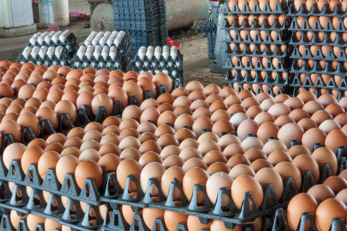 Los huevos ayudan al desarrollo de la queratina, el principal componente de las uñas