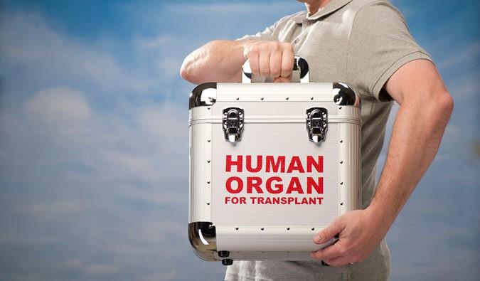 España es líder mundial de donación de órganos