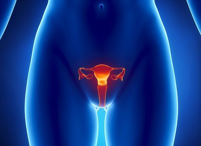 Los miomas uterinos son tumores benignos que se forman sin ninguna causa aparente en la cavidad del útero
