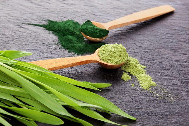Este tipo de alga es rica en ácidos nucleicos que protegen a todas las células del cuerpo