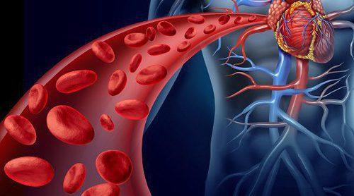 Angioplastia: todo lo que tienes que saber