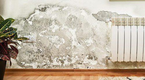 Cómo afectan las humedades de las paredes a tu salud