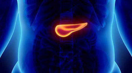 Cómo debe ser tu alimentación si tienes cáncer de páncreas