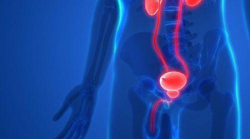 Por qué son importantes las revisiones de próstata