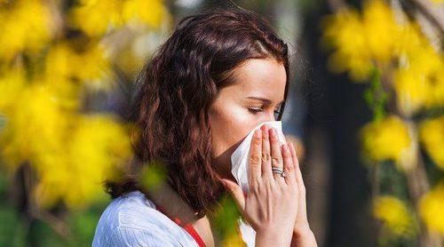 Cómo cuidar tus alergias en verano