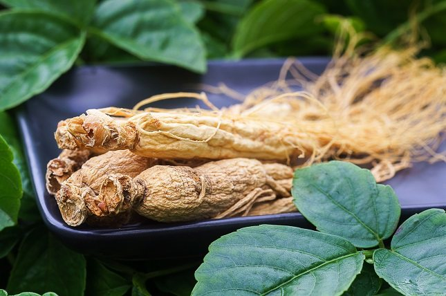 La forma más tradicional de consumir la ashwagandha es en infusiones o en polvo mezclada con leche caliente y miel