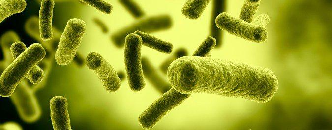 Las bacterias son capaces de desarrollar resistencia a los antibióticos