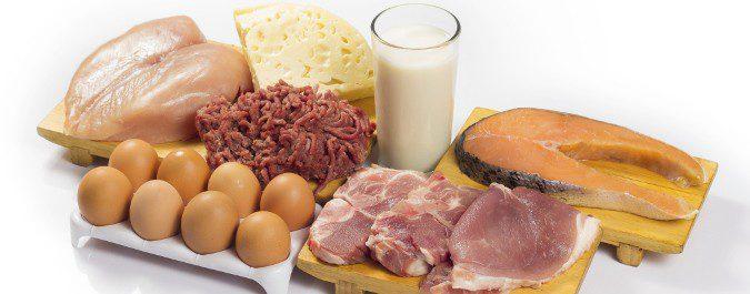 Los cereales, huevos, lácteos y carnes, los cereales y el pescado son alimentos ricos en proteínas