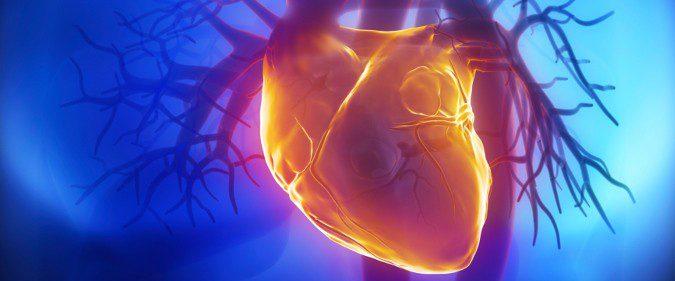 Una falta súbita de aporte de sangre al corazón provoca la muerte del músculo cardíaco