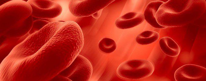 La hemofilia provoca diferentes tipos de hemorragias
