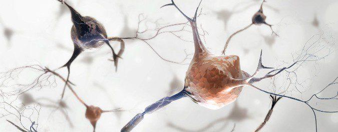En el Parkinson hay un déficit de liberación de dopamina en la sustancia negra del cerebro