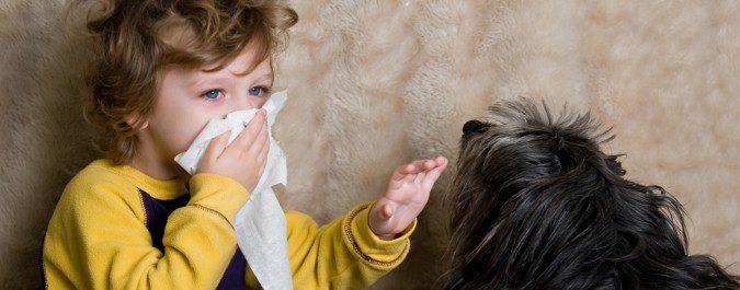 Se cree que criarse con una mascota puede evitar que se desarrollen alergias en el futuro