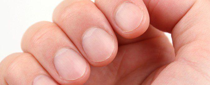 Pelo, uñas y piel están constantemente renovando sus células, por ello son muy sensibles a los cambios