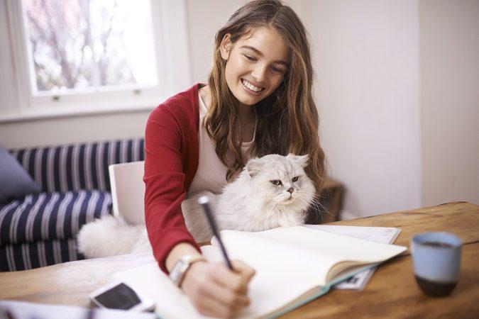 Las mascotas no solo son compañeros también se convierten en tu familia