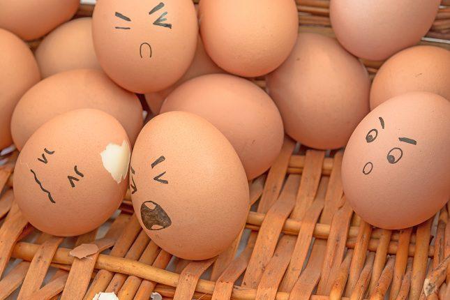 Consumir un huevo malo puede ser realmente dañino para la salud