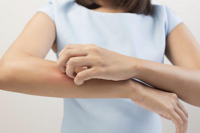La fiebre hemorrágica se transmite a través de las garrapatas
