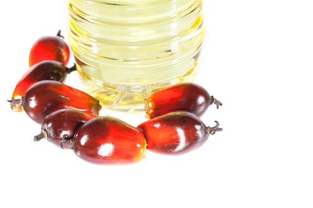 El aceite de palma es uno de los ingredientes principales de todo producto comestible