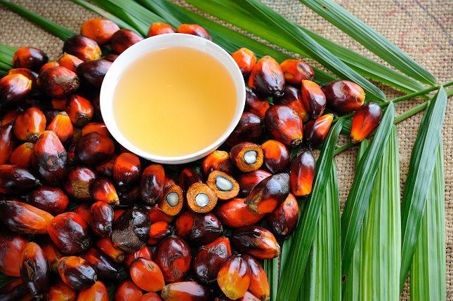 Evita todos los productos que contengan aceite de palma