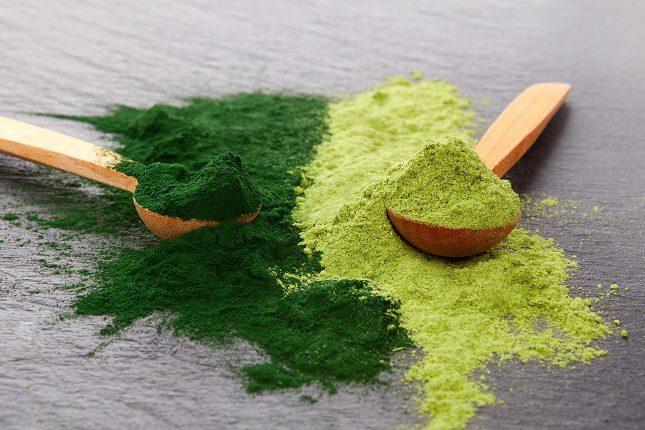 Dicha alga ayuda a favorecer la flora intestinal