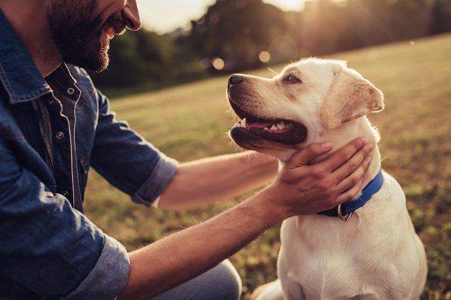 Las mascotas benefician a las personas con problemas graves de salud mental