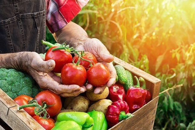 Escoge verduras coloridas y no te centres tanto en la carne