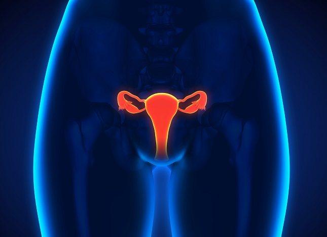 Si tienes una trompa sin estar obstruida y sana, puede haber embarazo sin demasiada ayuda
