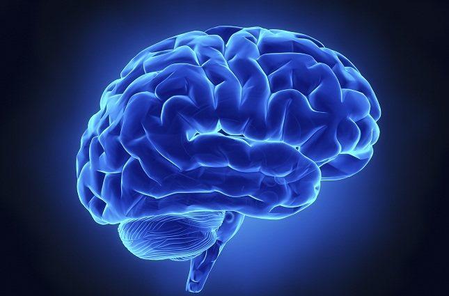Una de las mayores deficiencias de tu cerebro es que a veces es perezoso