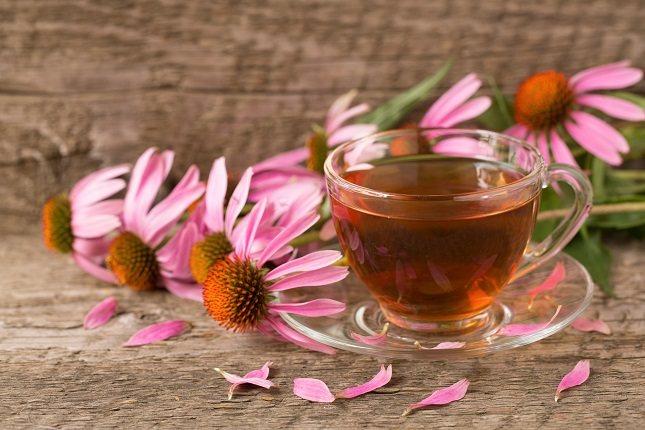 El té de equinácea es un remedio popular para los resfriados, la gripe y otras infecciones