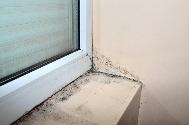 Mantén los niveles de humedad entre 40% y 60% en tu hogar