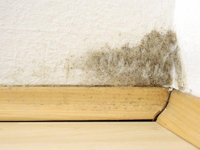 Asegúrate de que tu casa está suficientemente ventilada