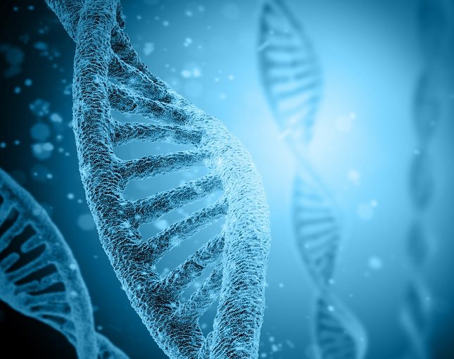 Los hombres tienen un cromosoma X y otro Y