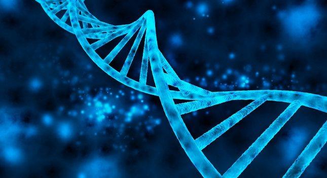 Los científicos han numerado los pares de cromosomas del 1 al 22