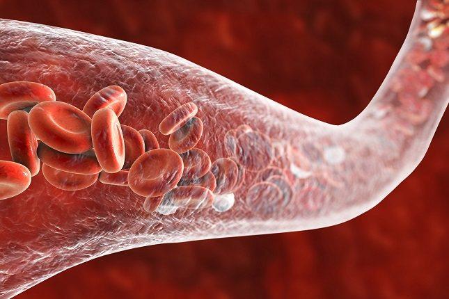 Hay varios tipos de glóbulos blancos o leucocitos