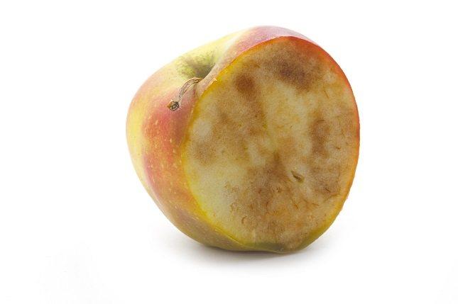 La oxidación también se puede evitar a través del cocinado de la propia fruta