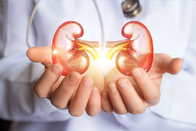 Los cálculos renales se desarrollan cuando se desarrolla una masa dura de cristales en el tracto urinario