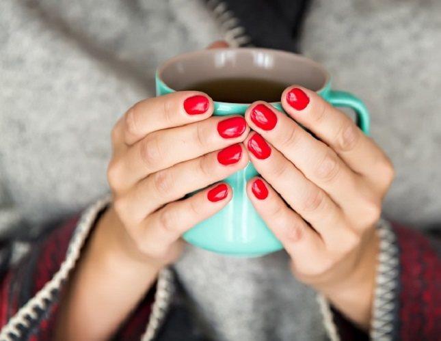 El té verde, está hecho de las hojas no fermentadas de la planta Camellia sinesis