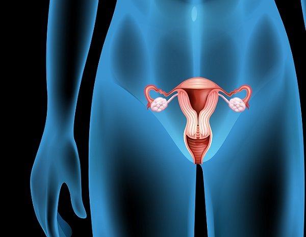 La causa principal del acné genital es la sudoración excesiva en el área genital