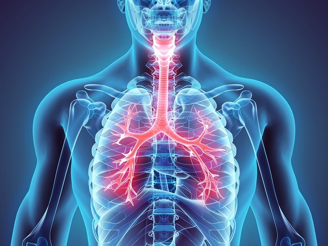 Las lesiones de TB dentro de los pulmones dificultan la respiración