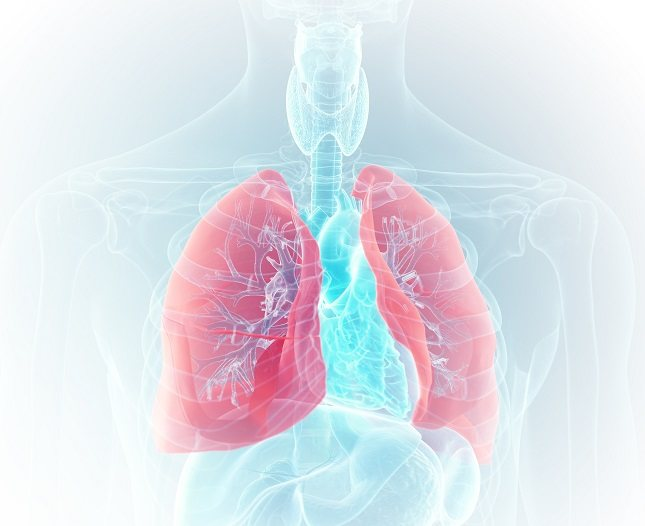 La neumonía a menudo comienza como consecuencia de la gripe