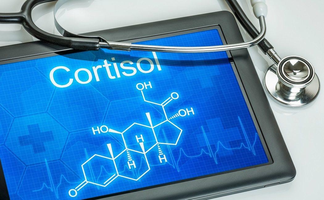 como+reducir+los+niveles+de+cortisol+en+el+cuerpo