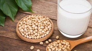 Menú completo con proteína no animal