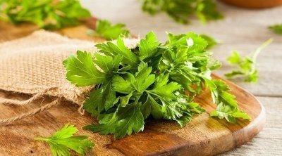 Beneficios para la salud de las hierbas aromáticas