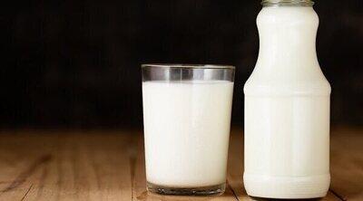 ¿Es importante la leche en la dieta diaria?