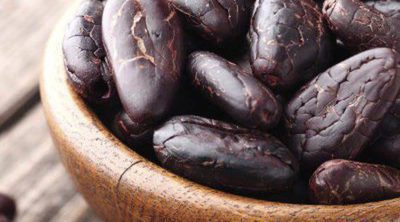 ¿Cuáles son los beneficios del cacao?