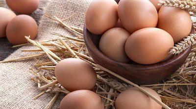 Los beneficios de los huevos para tu salud