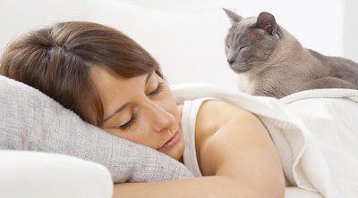 Por qué la siesta es saludable para ti