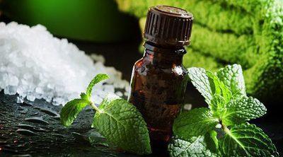 9 beneficios del aceite de citronela