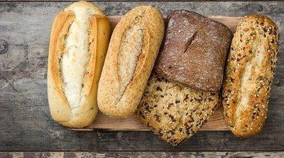 Comer pan... ¿engorda?