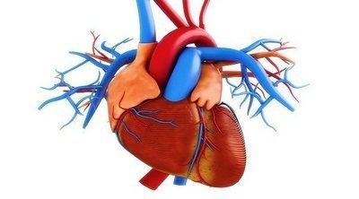 Qué es la arterioesclerosis